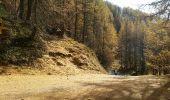 Trail Walk SAINTE-FOY-TARENTAISE - Le Monal - Photo 1