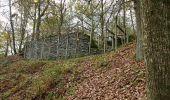 Trail Walk La Roche-en-Ardenne - Celtes et Ourthe - Photo 2