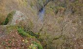 Trail Walk La Roche-en-Ardenne - Celtes et Ourthe - Photo 1