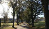 Randonnée Marche nordique Etalle - Bois de Chantemelle  - Photo 18