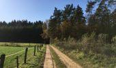 Randonnée Marche nordique Etalle - Bois de Chantemelle  - Photo 16