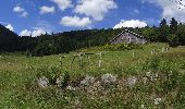 Trail Mountain bike BUSSANG - VTT N6° de bussang - Photo 3