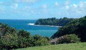 Trail Walk LE LORRAIN - MAISON POUR TOUS SÉGUINEAU - FOND D'OR - Photo 1