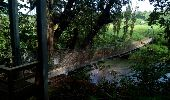 Trail Walk LE LORRAIN - MAISON POUR TOUS SÉGUINEAU - FOND D'OR - Photo 3
