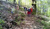 Randonnée Autre activité SAINT-CHRISTOL - st. cristol  - Photo 1