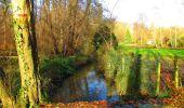 Trail Walk VIEUX-MOULIN - en forêt de Compiègne_8_Mont Collet_Mont St-Mard_RP de l'Armistice - Photo 58