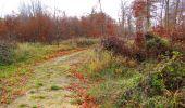 Trail Walk VIEUX-MOULIN - en forêt de Compiègne_8_Mont Collet_Mont St-Mard_RP de l'Armistice - Photo 31
