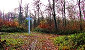 Trail Walk VIEUX-MOULIN - en forêt de Compiègne_8_Mont Collet_Mont St-Mard_RP de l'Armistice - Photo 64