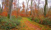 Trail Walk VIEUX-MOULIN - en forêt de Compiègne_8_Mont Collet_Mont St-Mard_RP de l'Armistice - Photo 22