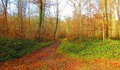Trail Walk VIEUX-MOULIN - en forêt de Compiègne_8_Mont Collet_Mont St-Mard_RP de l'Armistice - Photo 62