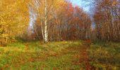 Trail Walk VIEUX-MOULIN - en forêt de Compiègne_8_Mont Collet_Mont St-Mard_RP de l'Armistice - Photo 42