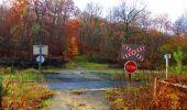 Trail Walk VIEUX-MOULIN - en forêt de Compiègne_8_Mont Collet_Mont St-Mard_RP de l'Armistice - Photo 81