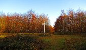 Trail Walk VIEUX-MOULIN - en forêt de Compiègne_8_Mont Collet_Mont St-Mard_RP de l'Armistice - Photo 40