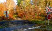 Trail Walk VIEUX-MOULIN - en forêt de Compiègne_8_Mont Collet_Mont St-Mard_RP de l'Armistice - Photo 78
