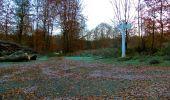 Trail Walk VIEUX-MOULIN - en forêt de Compiègne_8_Mont Collet_Mont St-Mard_RP de l'Armistice - Photo 17