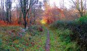 Trail Walk VIEUX-MOULIN - en forêt de Compiègne_8_Mont Collet_Mont St-Mard_RP de l'Armistice - Photo 51