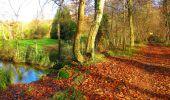Trail Walk VIEUX-MOULIN - en forêt de Compiègne_8_Mont Collet_Mont St-Mard_RP de l'Armistice - Photo 61