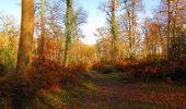 Trail Walk VIEUX-MOULIN - en forêt de Compiègne_8_Mont Collet_Mont St-Mard_RP de l'Armistice - Photo 67