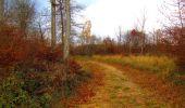 Trail Walk VIEUX-MOULIN - en forêt de Compiègne_8_Mont Collet_Mont St-Mard_RP de l'Armistice - Photo 29