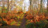 Trail Walk VIEUX-MOULIN - en forêt de Compiègne_8_Mont Collet_Mont St-Mard_RP de l'Armistice - Photo 65