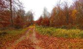 Trail Walk VIEUX-MOULIN - en forêt de Compiègne_8_Mont Collet_Mont St-Mard_RP de l'Armistice - Photo 26