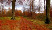 Trail Walk VIEUX-MOULIN - en forêt de Compiègne_8_Mont Collet_Mont St-Mard_RP de l'Armistice - Photo 27