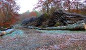 Trail Walk VIEUX-MOULIN - en forêt de Compiègne_8_Mont Collet_Mont St-Mard_RP de l'Armistice - Photo 16