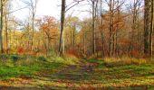 Trail Walk VIEUX-MOULIN - en forêt de Compiègne_8_Mont Collet_Mont St-Mard_RP de l'Armistice - Photo 69