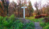 Trail Walk VIEUX-MOULIN - en forêt de Compiègne_8_Mont Collet_Mont St-Mard_RP de l'Armistice - Photo 6