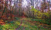 Trail Walk VIEUX-MOULIN - en forêt de Compiègne_8_Mont Collet_Mont St-Mard_RP de l'Armistice - Photo 73