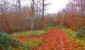 Trail Walk VIEUX-MOULIN - en forêt de Compiègne_8_Mont Collet_Mont St-Mard_RP de l'Armistice - Photo 32