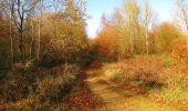 Trail Walk VIEUX-MOULIN - en forêt de Compiègne_8_Mont Collet_Mont St-Mard_RP de l'Armistice - Photo 45