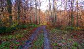 Trail Walk VIEUX-MOULIN - en forêt de Compiègne_8_Mont Collet_Mont St-Mard_RP de l'Armistice - Photo 72