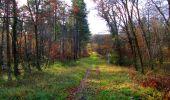 Trail Walk VIEUX-MOULIN - en forêt de Compiègne_8_Mont Collet_Mont St-Mard_RP de l'Armistice - Photo 4