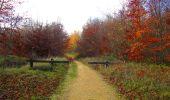 Trail Walk VIEUX-MOULIN - en forêt de Compiègne_8_Mont Collet_Mont St-Mard_RP de l'Armistice - Photo 36