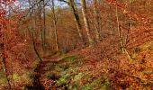Trail Walk VIEUX-MOULIN - en forêt de Compiègne_8_Mont Collet_Mont St-Mard_RP de l'Armistice - Photo 47