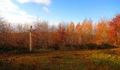 Trail Walk VIEUX-MOULIN - en forêt de Compiègne_8_Mont Collet_Mont St-Mard_RP de l'Armistice - Photo 41