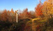 Trail Walk VIEUX-MOULIN - en forêt de Compiègne_8_Mont Collet_Mont St-Mard_RP de l'Armistice - Photo 43