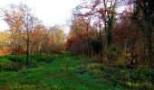 Trail Walk VIEUX-MOULIN - en forêt de Compiègne_8_Mont Collet_Mont St-Mard_RP de l'Armistice - Photo 5
