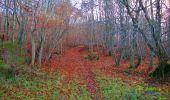 Trail Walk VIEUX-MOULIN - en forêt de Compiègne_8_Mont Collet_Mont St-Mard_RP de l'Armistice - Photo 52