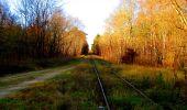 Trail Walk VIEUX-MOULIN - en forêt de Compiègne_8_Mont Collet_Mont St-Mard_RP de l'Armistice - Photo 79