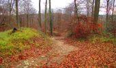 Trail Walk VIEUX-MOULIN - en forêt de Compiègne_8_Mont Collet_Mont St-Mard_RP de l'Armistice - Photo 25