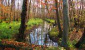 Trail Walk VIEUX-MOULIN - en forêt de Compiègne_8_Mont Collet_Mont St-Mard_RP de l'Armistice - Photo 59