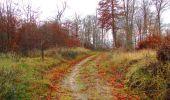 Trail Walk VIEUX-MOULIN - en forêt de Compiègne_8_Mont Collet_Mont St-Mard_RP de l'Armistice - Photo 30