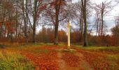 Trail Walk VIEUX-MOULIN - en forêt de Compiègne_8_Mont Collet_Mont St-Mard_RP de l'Armistice - Photo 28