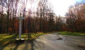 Trail Walk VIEUX-MOULIN - en forêt de Compiègne_8_Mont Collet_Mont St-Mard_RP de l'Armistice - Photo 71