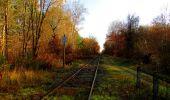 Trail Walk VIEUX-MOULIN - en forêt de Compiègne_8_Mont Collet_Mont St-Mard_RP de l'Armistice - Photo 80