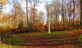 Trail Walk VIEUX-MOULIN - en forêt de Compiègne_8_Mont Collet_Mont St-Mard_RP de l'Armistice - Photo 68