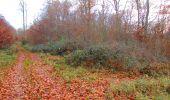 Trail Walk VIEUX-MOULIN - en forêt de Compiègne_8_Mont Collet_Mont St-Mard_RP de l'Armistice - Photo 34