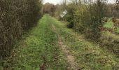 Trail Walk LE SEL-DE-BRETAGNE - 27.11.2017 - PETIT FOUGERAY Nord à LE SEL Sud - Photo 7